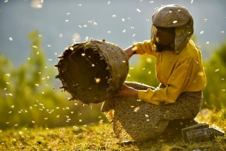 Oscar Doc Nominations 2020